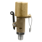 Kingston 110C-2-025 High Pressure Safety Valve with Lever